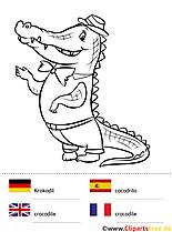 Kostenlose Arbeitsblätter für die Grundschule - Malvorlagen Sprachen lernen