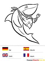 Sprachen lernen in der Grundschule mit lustigen Ausmalbildern