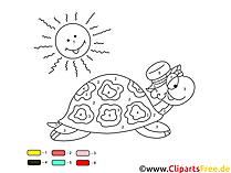 Kostenlose Malen nach Zahlen Malbögen zum Drucken Schildkröte, Sonne