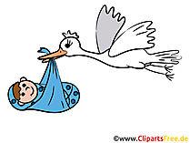 Stork-foto's voor de geboorte