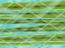 Bilder Desktop Hintergrund