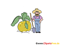 Bauer Cartoon, Bild, Clipart, Illustration