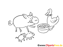 Bauernhoftiere zum Ausmalen