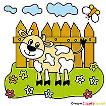 Cartoon koe - foto's van de boerderij