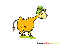 Cow Clip Art, Comic, Cartoon free