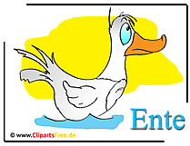 Ente Cartoon-Clipart free