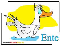 Duck çizgi film clipart bedava