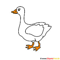 Goose cartoon clipart