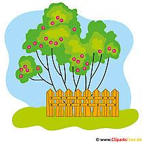 Garten Bild - Bilder vom Bauernhof