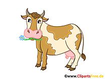 Kuh Clipart, Grafik, Illustration, Bild gratis