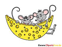 Mäuse mit Käse Clipart, Grafik, Illustration, Bild gratis
