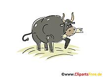 Sığır eti clipart, resim, çizgi film, ücretsiz grafik
