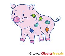 Sau Clip Art, Bild, Cartoon kostenlos