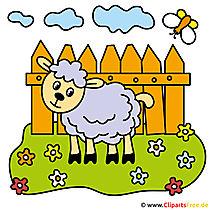 Koyun karikatür ücretsiz