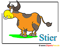 Stier Cartoon Clipart-Bild free