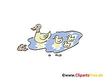 Ördek gölet görüntü, Küçük resim, çizgi film