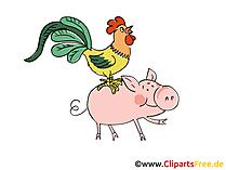 Tiere auf dem Bauernhof Bilder