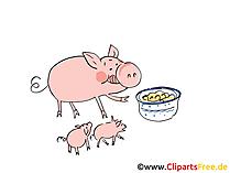 Tiere vom Bauernhof Bils, Illustration, Cliparts