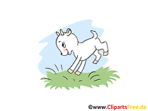 Zicklein Clipart, Bild, Cartoon