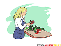 Floristin Ausbildungsberufe Bilder, Cliparts