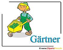 Gardener Clipart free - Occupations-afbeeldingen gratis