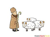 Schäfer Bild, Clipart, Image, Cartoon gratis