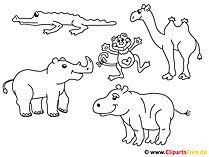 Kolorowanie zwierząt