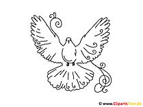 Pomaluj swój własny szablon ptaka, gołębia