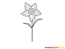 Blume Ausmalbild