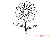 花の写真を印刷