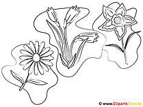 Blumen zum Ausmalen und Ausdrucken