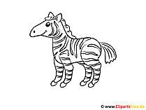 Kolorowanki dla małych dzieci Zebra
