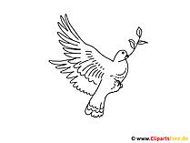 着色のための鳥の写真