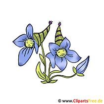 Blume Bild kostenlos - Lustige Blume