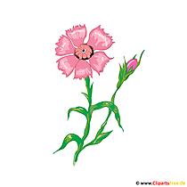 Obraz cyan kwiat, ilustracja, karta