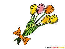 Blumenstrauss mit Tulpen Bild - Clipart