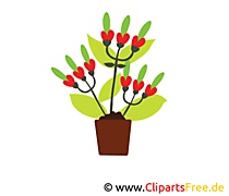 Bukiet Kwiaty clipart, zdjęcia, ilustracje, grafika