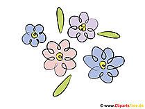 Clipart çiçekler