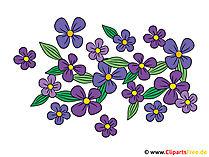 Clipart çiçekler bedava