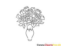 Immagini gratuite su rose