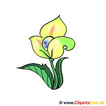Sarı çiçek resmi clipart
