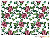 Hintegrundbild Rosen Blumen