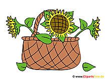 花のバスケット画像 - クリップアート