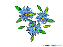 Cornflowers Clipart Obrazy