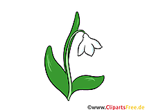 Maiglöckchen Clipart, Illustration, Bild kostenlos