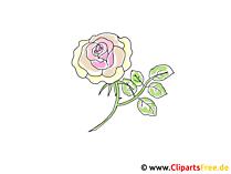 Gele roos Clipart