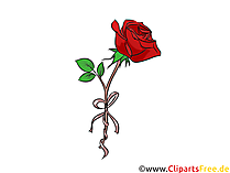 Clipart rosa gratis