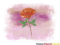 Illustrazione rosa, grafica, immagine, clipart gratis