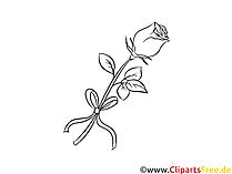 Rosa per la stampa e la colorazione Clipart, foto, grafica