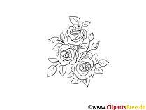 Rose per colorare clipart